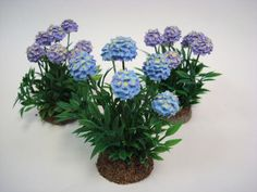 Miniature Garden Hydrangeas, Set of Three