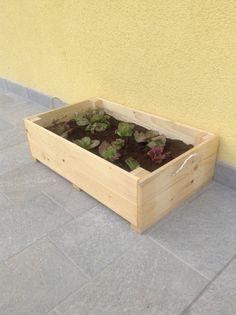 Ortobox - per il mio orto sul balcone!!!