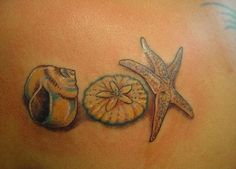 Seashell Tattoos For Women -Skydragon Dreams Beach Inspired Tattoos, Beach Theme Tattoos, Beach Tattoos, Dream Tattoos, Future Tattoos, Cool Tattoos, Tatoos, Awesome Tattoos, Foot Tattoos For Women