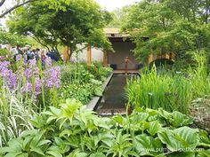 The Morgan Stanley Garden for Great Ormond Street Hospital was designed by Chris Beardshaw. The Garden is pictured here at the RHS Chelsea Flower Show 2016, where the RHS judges awarded the garden with a Gold Medal.