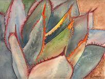 Watercolor paintings of succulent plants, artwork by Debra Lee Baldwin