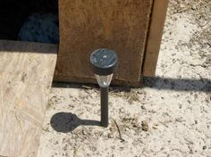 Solar light in the coop run so bugs   collect at night as a treat for the chickens