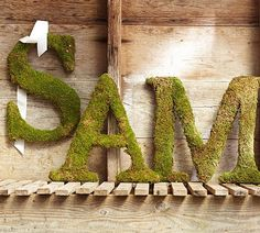 """Moss monogram wreaths. Too bad our last name starts with """"O""""!"""