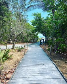 Vacation Planner, Fort Myers, Island Life, Plan Your Trip, Paths, Paradise, Sidewalk, How Are You Feeling, Florida