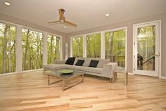Maple floors with gray walls. Mayo Woodlands - modern - family room - other metro - Vision Homes & Remodeling