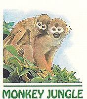 Monkey Jungle | Miami Zoo | Things to do in Miami