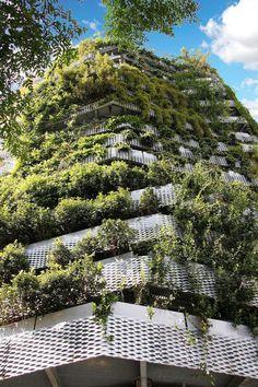 façade végétalisée en parterres de plantes retombantes par Capella Garcia Arquitectura