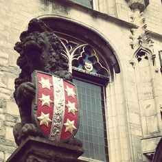 The weapon of Gouda, the South Holland lion holding the city emblem.