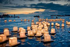 - floating lanterns -
