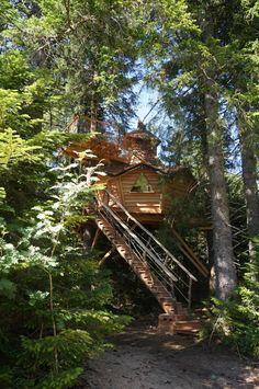 Cabane Au Brendezï - Cabane dans les Arbres en Auvergne