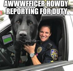 #dog #police #funny #memes Police Memes, K9 Police, The Best Is Yet To Come, King Of Kings, Labrador Retriever, Cute Animals, Funny Memes, Wattpad, Coding