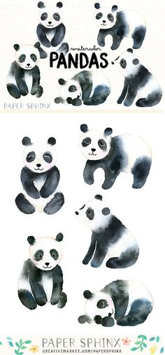 Watercolor Pandas Pack Graphics sweet pandas, hand-painted in watercolors. Includes sitting, standing and sleeping pandas. The g by PaperSphinx Panda Illustration, Pencil Illustration, Graphic Illustration, Illustrations, Panda Painting, Painting & Drawing, Watercolor Animals, Watercolor And Ink, Sleeping Panda