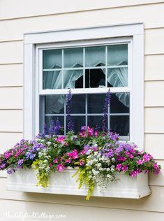 5 Tips for Gorgeous Window Boxes - The Lilypad Cottage #containergardeningideasforsun