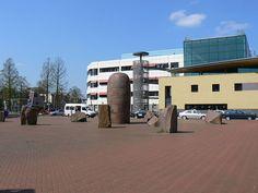 Het rode geheim (1998) Sigurdur Gudmundsson, Universitair Medisch Centrum Groningen