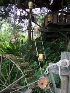 Swiss Family Robinson Tree House