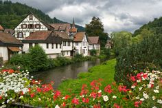 Explore Black Forest, Germany - Bucket List Dream from TripBucket