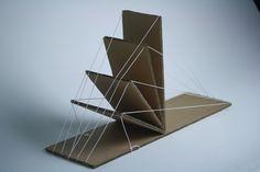 線性/平面| 傑西約翰遜