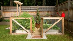 Whether you are just beginning your first vegetable garden or are an experienced urban gardener looking to try something new (drying your own herbs, perhaps?), here are nine ideas to inspire your backyard farmstead.