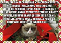 "grumpy cat christmas pics | Caturday Blogging ""Grumpy Cat Christmas Card"" 