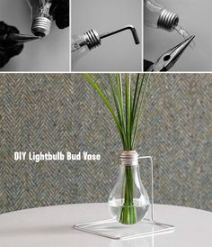 DIY Light Bulb bud Vase