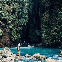 Jungle Wanderings.. 🍃✨