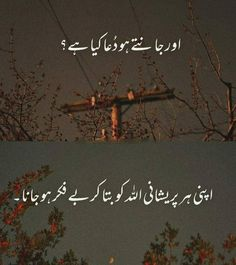 Urdu Funny Quotes, Poetry Quotes In Urdu, Ali Quotes, Love Poetry Urdu, Best Urdu Poetry Images, Quran Quotes, Words Quotes, Qoutes, Muslim Love Quotes