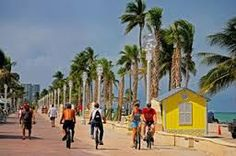 things to do in miami - Google Search