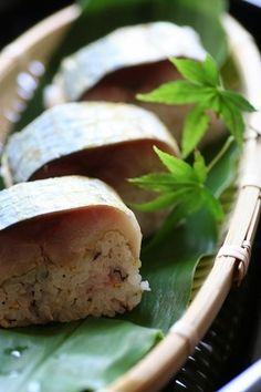 Japanese mackerel pressed sushi 鯖寿司
