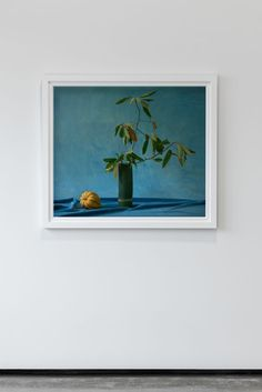 """Acorn Squash From """"Gild"""" - an exhibition by Billie Culy // New Zealand - available via Parlour Projects, Napier // as interviewed on Studio Home"""