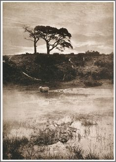 Henry Peach Robinson, The Pictorialist - Morning Mist History Of Photography, Video Photography, Amazing Photography, Photography Rules, Edward Steichen, Vintage Photographs, Vintage Photos, Famous Photographers, Historical Photos