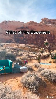 This desert landscape makes for the perfect backdrop to a microwedding or elopement.  Valley of fire is located just outside of las vegas/. #elopement #elopementlove #elopementideas #lasvegaswedding #bloomingbelleslv #microwedding #weddingideas Valley Of Fire, Vegas Golden Knights, Desert Landscape, Las Vegas Weddings, Las Vegas Strip, Nevada, Weddingideas, Backdrops, Wedding Photos