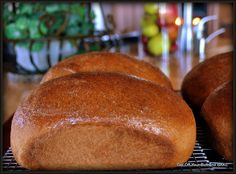 WHOLE WHEAT BREAD – Hot out of the oven!