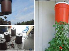 Vzali jsme obyčejné kbelíky, které jsme využili na své zahrádce tak jak byste asi nečekali: Výsledek je ohromující! Rock Garden Design, Garden Landscape Design, Garden Landscaping, Pallets Garden, Pallet Gardening, Easter Crafts For Kids, Garden Ornaments, Projects To Try, Ideas