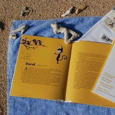 Revista de Povestiri on a beach, in Japan