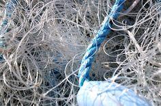 Ontdekken: 'waan van de dag' geen touw aan vast te knopen