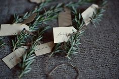 herb place cards wedding seating ideas - can do this with olive branches. Herb Wedding, Olive Wedding, Diy Wedding, Wedding Day, Wedding Dinner, Wedding Blog, Wedding Places, Wedding Place Cards, Wedding Locations