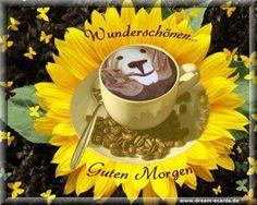 Morning Gif, Morning Quotes, Good Morning Roses, Smiley Emoji, Good Morning Greetings, Youtube, Smileys, Humor, Gb Bilder