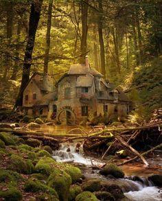 Vecchio Mulino nella Foresta Nera - Germania