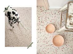 Avant / Apres Cuisine - Fait Maison - Maïa Chä Farrow Ball, Home Decor, Before After Kitchen, Home Made, Dog, Accessories, Decoration Home, Room Decor, Home Interior Design