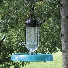 Self-Watering BIRD BATH & FOUNTAIN  Give feathered friends a continuous supply of water...dispensed only as needed! Just use any 2L pop bottle, fill with water, and gravity will keep the fountain flowing to keep the bath fresh. Hang from a tree branch, or mount on top of a steel pipe (not included).
