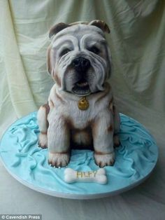 Ceramic designer Vicki Smith creates amazing novelty cakes that can take up to FIFTY HOURS to bake and decorate Beautiful Cakes, Amazing Cakes, Lil Sweet, Children's Films, Dog Cakes, Novelty Cakes, Cute Cakes, Themed Cakes, Eat Cake
