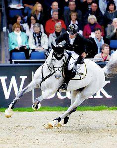 Jan, ich will ein Pferd von dir. : Foto