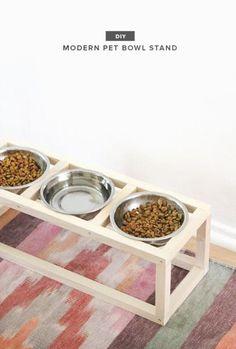 Porta platos para perros