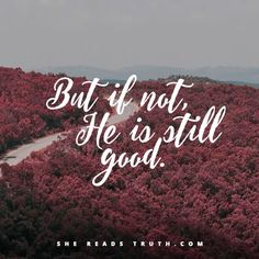 #SheReadsTruth #SRTDaniel