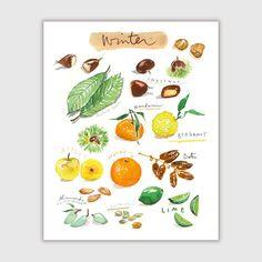 Fruits d'hiver, Aquarelle, Illustration A4, Décoration cuisine, Peinture de fruits, Affiche cuisine, Illustration fruits, Multicolore