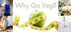 Why Go Veg? Learn about becoming a Vegetarian