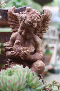 Sweet Cherub...with bird...garden.