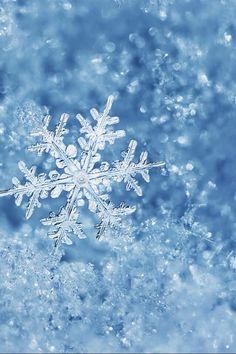 Le flocon appartient à la reine des neiges ❄️