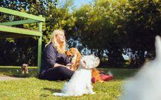 Vous avez besoin de confier votre animal de compagnie à une personne de confiance qui prendrasoin de votre animal de compagnieaussi bien que vous ?! Néanmoins, vous éprouvez certainesappréhensions à cette idée ou vous ne savez tout simplement pas comment vous y prendre?! Parceque la...