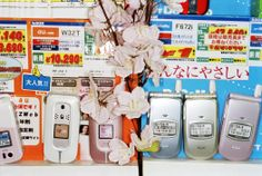 JAPAN. Tokyo. Cherry Blossom. 2006. by Martin Parr